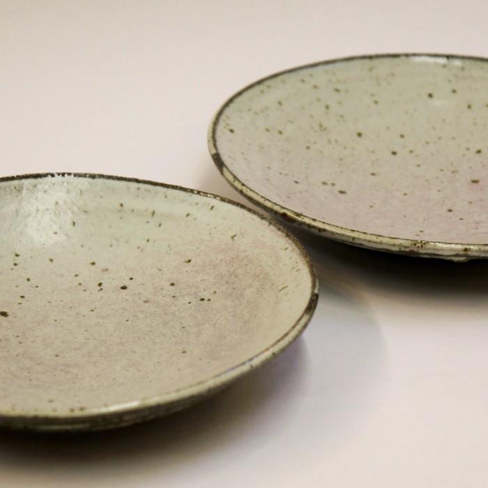 2 Dinner Plates